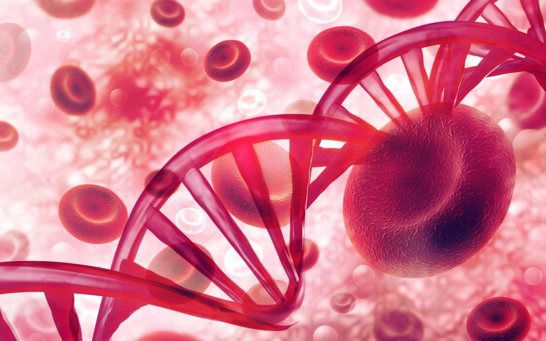 Blood tumor mutational burden predicts immunotherapy outcomes in NSCLC